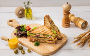 Picture spikelets, tomato, olives, sauce, sandwich, salad