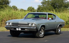 Picture Chevrolet, Classic, Coupe, Chevelle, Muscle car, Vehicle
