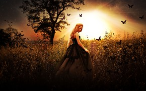 Picture GRASS, The SUN, FIELD, BUTTERFLY, DRESS, RAYS, CORSET, RED