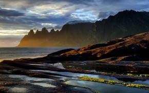 Picture sea, mountains, shore, Norway, Senja