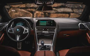 Picture coupe, interior, BMW, 2018, 8-Series, 2019, M850i xDrive, Eight, G15