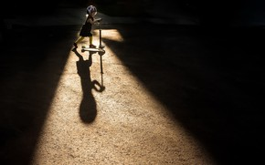 Picture light, shadow, girl, scooter