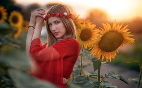 Picture girl, sunflowers, Natalia