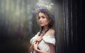 Picture girl, wreath, braids, Natalia Ostapenko