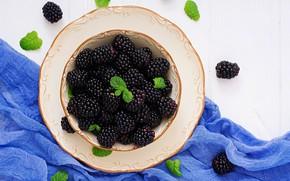 Picture plate, BlackBerry, gauze
