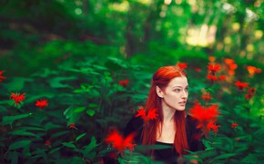 Picture greens, forest, girl, flowers, mood, red, elf