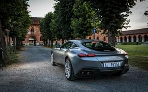 Picture road, trees, coupe, Ferrari, Roma, 2020