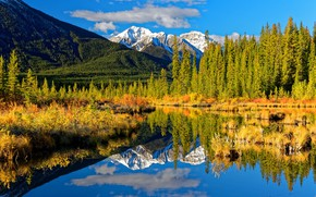 Picture autumn, forest, mountains, lake, reflection, Canada, Albert, Banff National Park, Alberta, Canada, Rocky mountains, Banff …