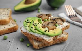 Picture mushrooms, polka dot, bread, sandwich, avocado, Chia