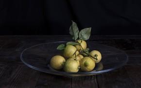 Picture plate, fruit, lemons
