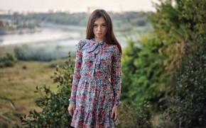Picture look, water, hair, Girl, dress, shrubs, Sergey Churnosov