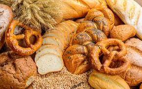 Picture wheat, rye, bread, ears, cakes, grain, loaves, pretzel