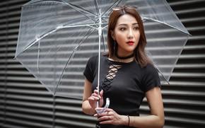Picture look, girl, umbrella, sweetheart, glasses, Asian