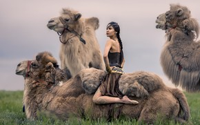 Picture girl, nature, camels