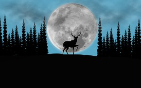 Picture forest, the moon, deer, art, picture