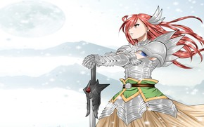 Picture Fairy Tail, Fairy tail, sword, armor, Elsa