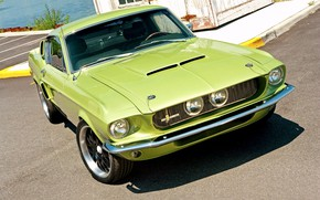 Picture Ford Mustang, Shelby GT 500, Coupe, Fastback, Vehicle, Muscle classic