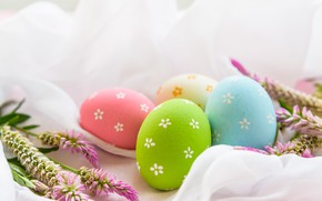 Picture flowers, eggs, Easter, happy, flowers, eggs, easter, decoration