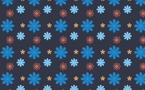 Wallpaper flowers, background, blue background