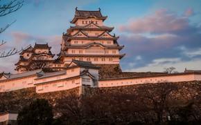 Picture the sky, castle, Japan, Japan, Himeji Castle, Himeji, Himeji Castle, Samoa egrets, Himeji