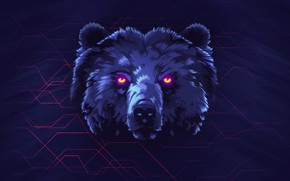 Wallpaper Bear, Background, Face, Neon, Animals, James White, Synth, Retrowave, Synthwave, New Retro Wave, madeinkipish, Futuresynth, ...
