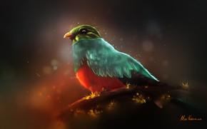 Picture Figure, Bird, Feathers, Art, Illustration, Environments, Mike Fazbear, Autumn bird, by Mike Fazbear