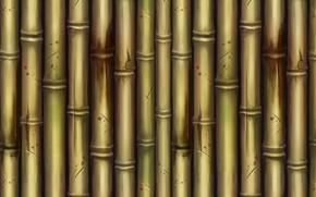 Picture texture, bamboo, art, Bamboo, Dan Khanh Tran