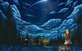 Picture winter, cat, girl, clouds, snow, snowflakes, night, anime, art, pixiv fantasia