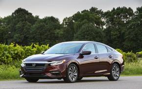 Picture forest, Honda, sedan, Hybrid, Insight, hybrid, Touring, four-door, 2019