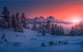 Picture winter, snow, trees, landscape, sunset, mountains, nature, the snow