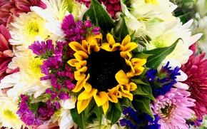 Picture flowers, bouquet, Sacro