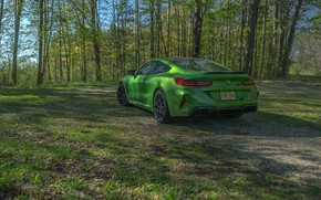 Picture forest, coupe, BMW, Coupe, 2020, BMW M8, two-door, M8, M8 Competition Coupe, M8 Coupe, F92