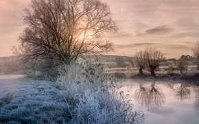 Picture frost, the sky, grass, water, clouds, trees, reflection, dawn, field, morning