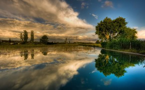 Picture grass, trees, reflection, river