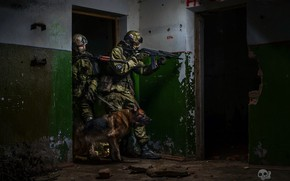 Wallpaper dog, soldiers, special forces