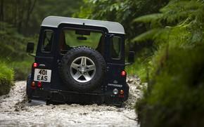 Picture back, Land Rover, Defender, 2013, Defender 90