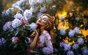 Picture girl, flowers, nature, pose, hair, portrait, garden, dress, beautiful, Melanie Dietze