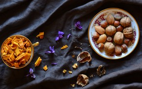 Picture flowers, the dark background, food, fabric, nuts, still life, hazelnuts, composition, walnut
