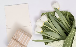 Picture gift, bouquet, tape, tulips, white