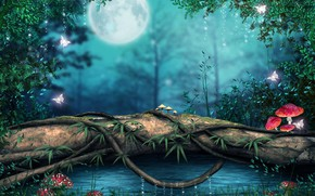 Picture greens, night, nature, mushrooms, vines, tree over the water