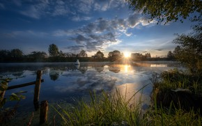 Picture grass, the sun, rays, trees, landscape, nature, reflection, river, morning, Bank, Dubna, baken, Andrei
