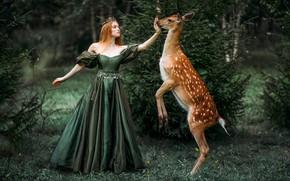 Picture forest, girl, dress, fantasy, DOE