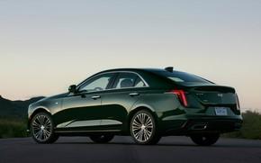 Picture Cadillac, the evening, sedan, four-door, 2020, CT4