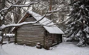 Picture winter, forest, snow, trees, hut, village, house, house, hut, forest, landscape, winter, snow, countryside, hut