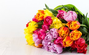 Picture bouquet, colorful, tulips, flowers, tulips