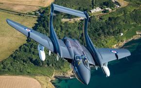 Picture Fighter, RAF, Royal Navy, Sea Vixen, de Havilland Aircraft Company, de Havilland DH.110 Sea Vixen