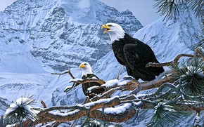 Picture winter, snow, mountains, birds, branches, nature, eagle, figure, picture, art, pair, wolves, painting, needles, the …