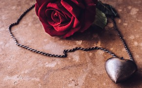 Picture flowers, gift, heart, rose, pendant, red, love, red, heart, flowers, romantic, gift, roses