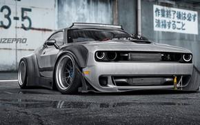 Picture Auto, Machine, Grey, Dodge, Challenger, Dodge Challenger, Rendering, Dmitry Strukov, Dizepro, by Dmitry Strukov