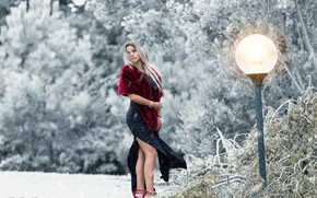 Picture winter, girl, snow, pose, the wind, model, dress, lantern, fur, Marco Events